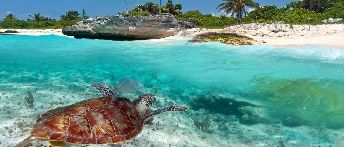10 ساحل شگفت انگیز مکزیک